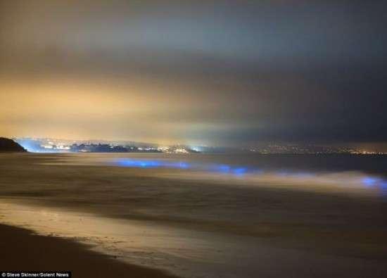 noticias Una misteriosa luz azul aparece en playas de California
