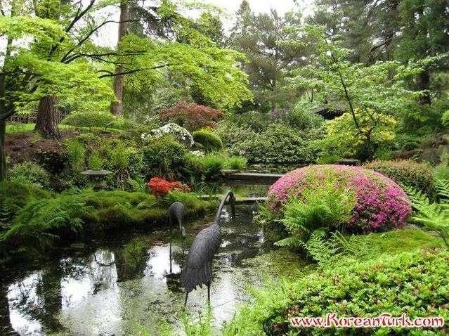 En guzel bahce ornekleri 681 japon bahceleri japon bahce sanati html